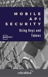 API Ebook cover